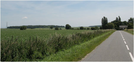High Wood on the left horizon with the village of Bazentin-le-Petit on the right.
