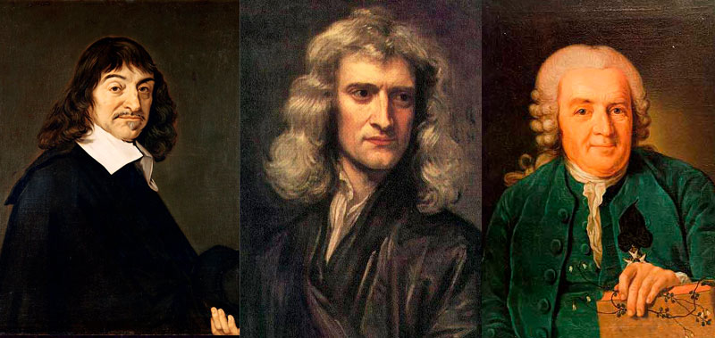 Decartes, Newton and Linnaeus
